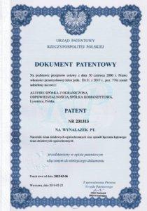 Dokument patentowy