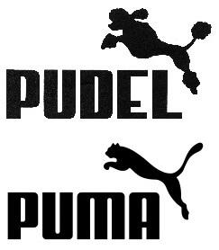 Puma vs Pudel